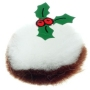 Christmas Pudding Bug